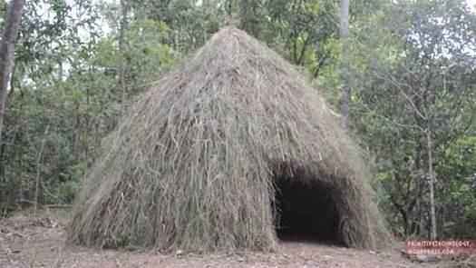 Watch This Aussie Build A Grass Hut In A Week
